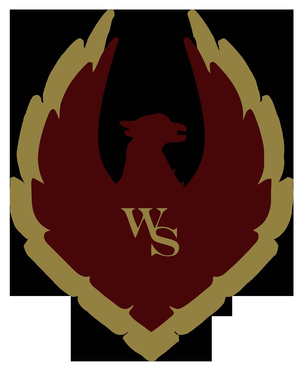 wsts logo